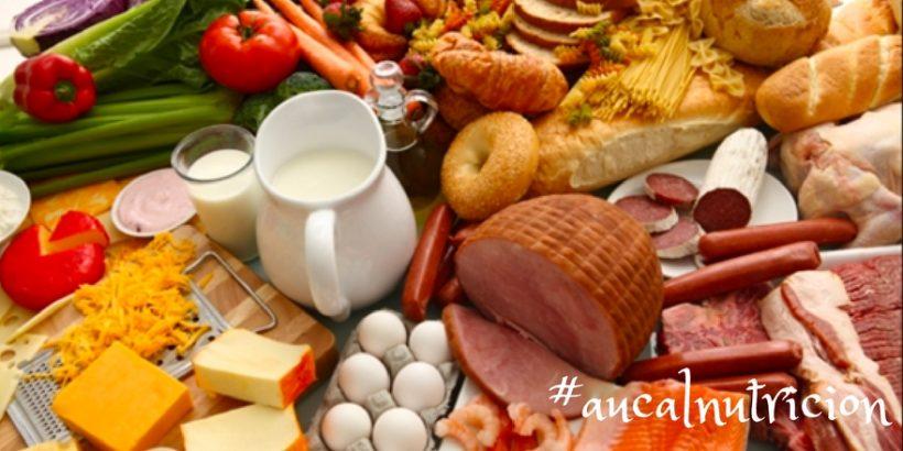 ¿Para qué sirve la L-Carnitina? | Dietética