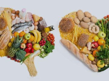 Cerebro y Comida