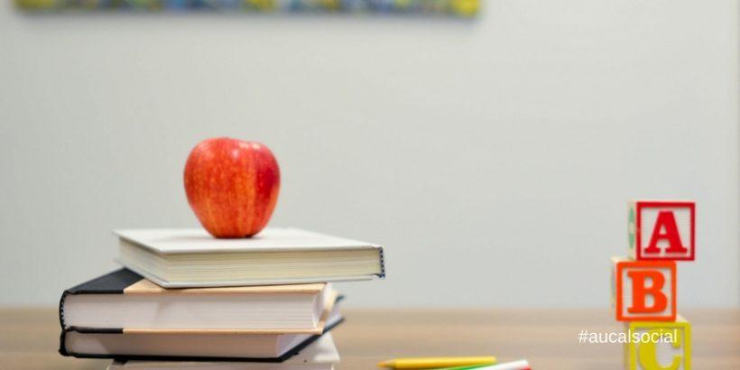 ¿Funcionan correctamente los Proyectos Educativos en los centros escolares?